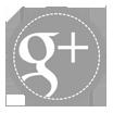 Google+ Icon - New Gray