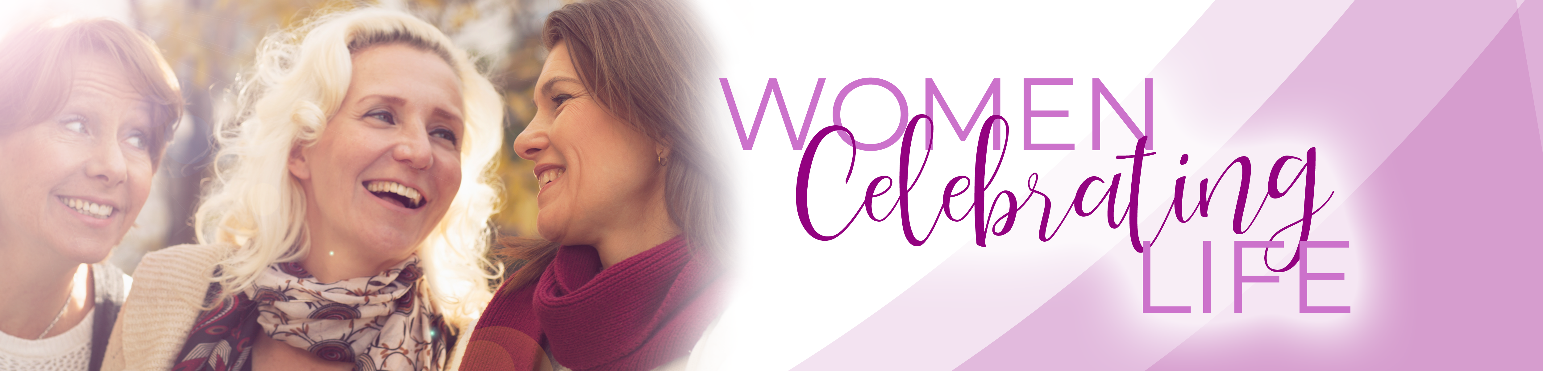 WCL site banner